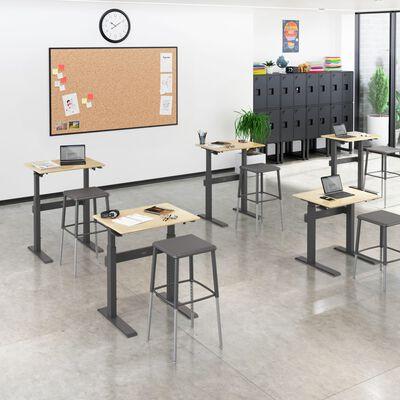 Sit-Stand School Desk 3-12